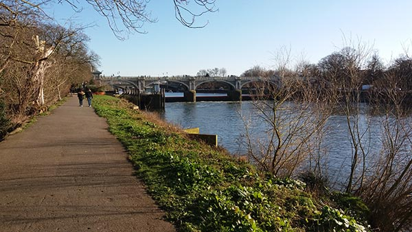 Chiswick to Richmond walkbridges walk